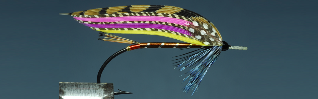 Mr Macredy 01 fly