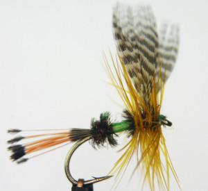 dry fly b