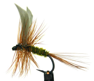 dry fly d