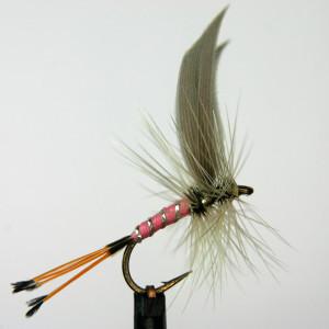 dry fly e